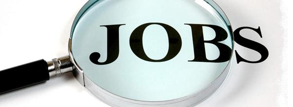 12 Essential Job Hunting Secrets